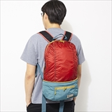 [バートン]Packable Sleyton Hip Pack