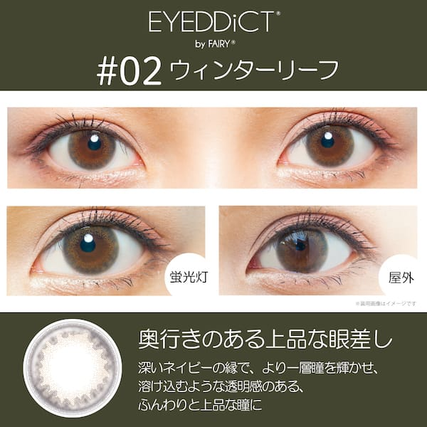 [1day/10枚入]アイディクト ウィンターリーフ13.5mm