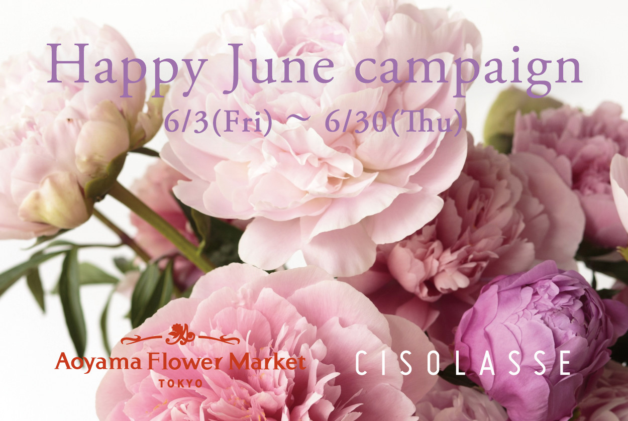 青山フラワーマーケット× CISOLASSE Happy June Campaign