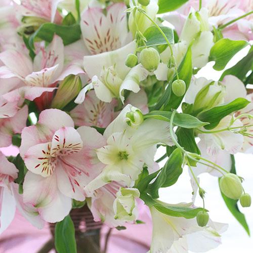 【4/4到着】Weekly Flower アルストロメリア8本と季節の草花