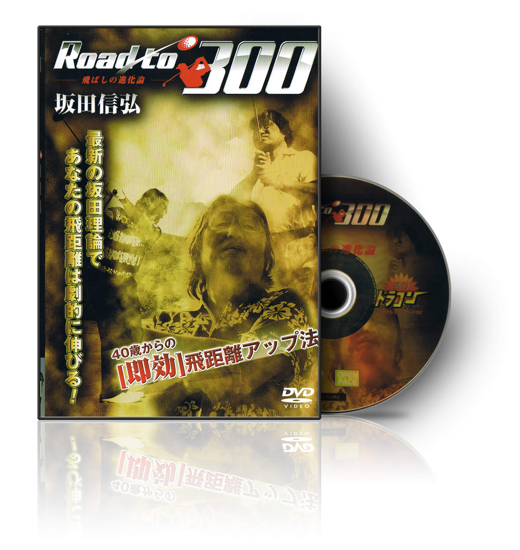 Road to 300 飛ばしの進化論