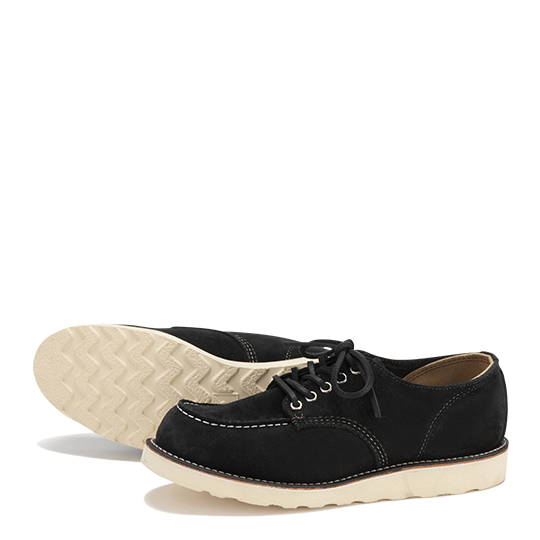 Irish Setter Oxford
