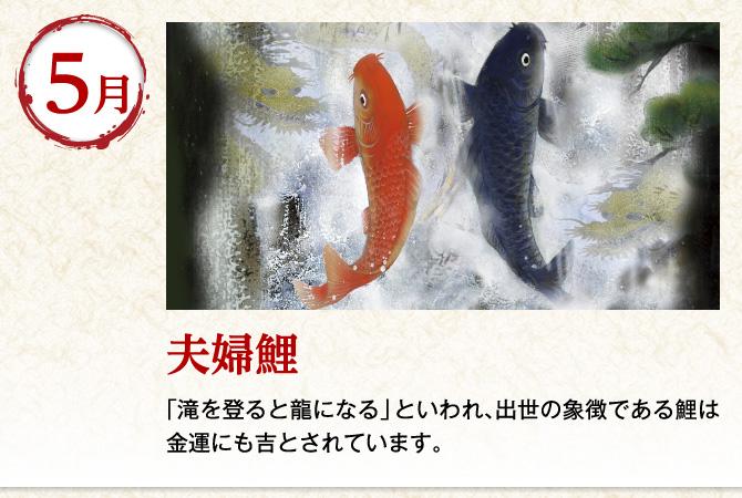 〈5月:夫婦鯉〉「滝を登ると龍になる」といわれ、出世の象徴である鯉は金運にも吉とされています。