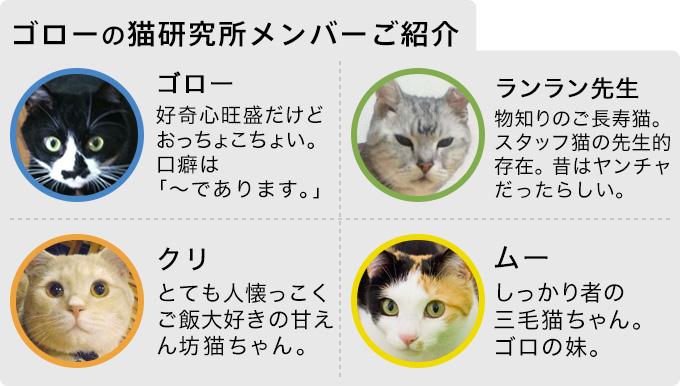 猫 猫 の 猫 ごはん は に
