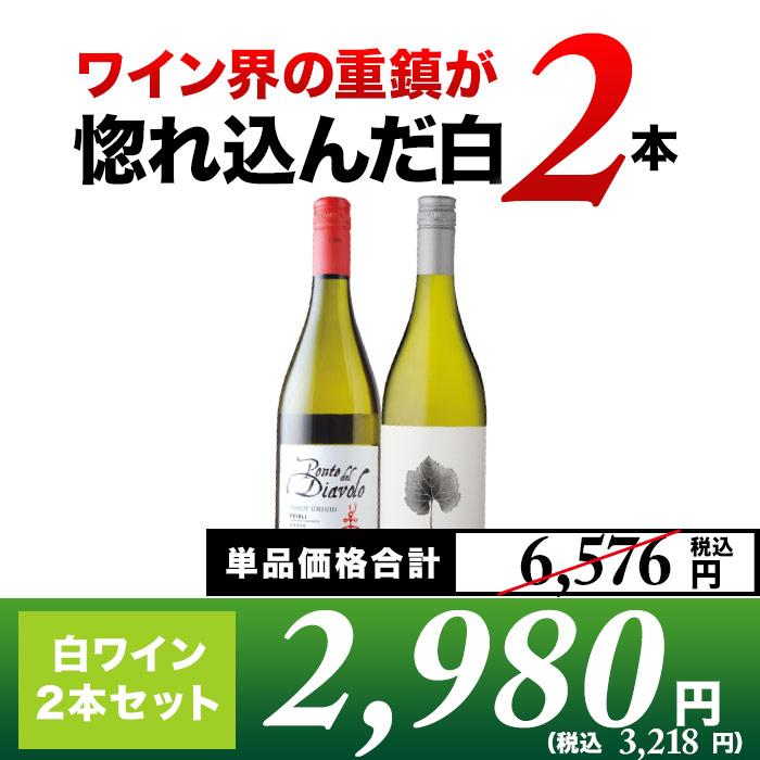 SALE!ワイン界の重鎮マスターオブワインが惚れ込んだ白2本